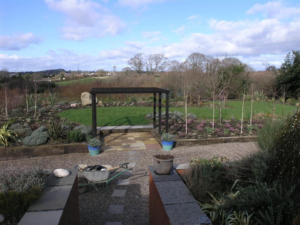 Back garden one year old Feb 2007