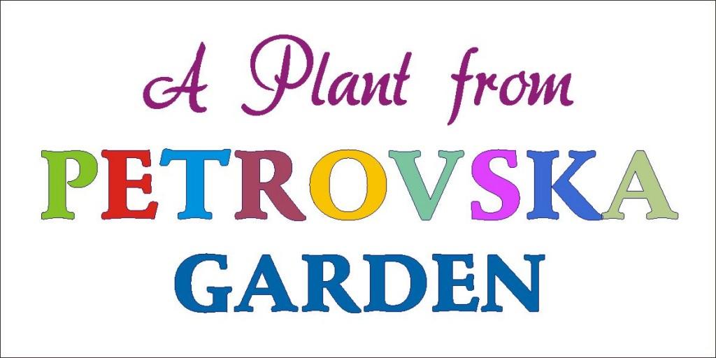 Petrovska Garden Plant Label